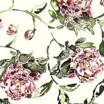 """Peonies"" by LauraHall"