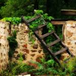 """Rustic Ladder"" by PerryWebster"