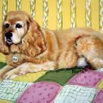 """Sadie - Cocker Spaniel Dog on Quilt"" by RebeccaKorpita"
