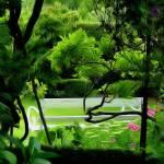"""""""Artist Garden"""" by kenart"""