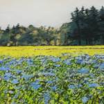 """""""camas...tree line Coquille River"""" by hitchcock"""