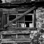 """Old Barn Window"" by PerryWebster"