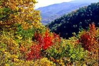 Colorful Tennesse Mounains