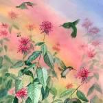 """Hummingbird Rainbow"" by Sharon_himes"