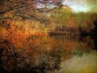 Painterly Pond