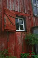 Red is the color of the barn ,white is the window