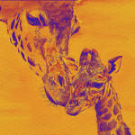 """giraffe love"" by pietrastone"
