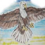 """PHILADELPHIA EAGLE"" by johnhawkdoe"