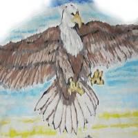 PHILADELPHIA EAGLE Art Prints & Posters by eric miller