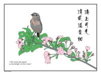 bird on flowering branch