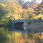 """A Bridge in Prospect Park 2"" by alicia954"