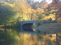 A Bridge in Prospect Park 2
