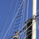 """Climbing the Mast"" by WilshireImages"