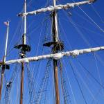 """""""Youth Climbs the Mast"""" by WilshireImages"""