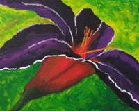 Day Lily in Purple