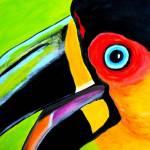 """The smiling toucan"" by ClaudiaTuli"