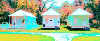 Pretty Ladies - Colorful Shotgun Houses Natchez