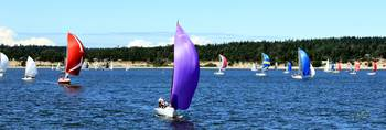 Race Week Purple 2011