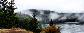 Fog Bridge 2011 05