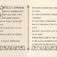 Sonnet 18: Shall I Compare Thee To a Summer's Day? Art Prints & Posters by Diane George