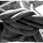 """Rope"" by JeanMegahan"