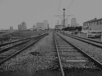 Streetcar Tracks to the New Orleans Skyline