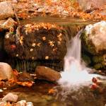 """Ramsey Canyon Waterfall"" by drfizzics"