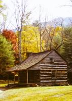 Log Cabin in Fall Trees