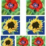 """""""Poppy sunflower group"""" by studiobythesound"""