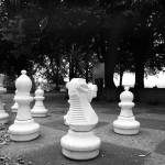 """Chess (Morat / Murten)"" by salekphotography"