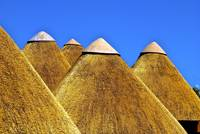 Thatch huts
