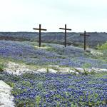 """Stones and Three Crosses in Blue Bonnets"" by darknesstolight"