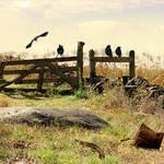 """""""Gettysburg"""" by spadecaller"""