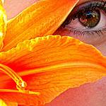 """Orange tint of color"" by PhotographLover"
