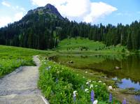 Tipsoo Lake - Mount Rainier National Park