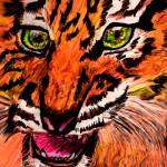 """Tiger Agression"" by Rosemary"