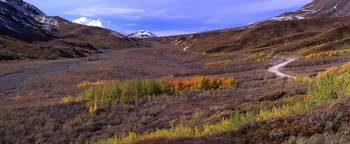 Polychrome Pass & the Peak of Denali