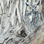 """Great Horned Owl a wink at you 23x16"" by Coloradographicalchemy"