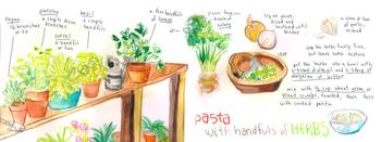 Pasta with Herbs by Naomi Bardoff