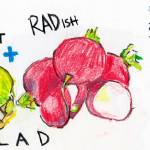 """Sprout and Radish Salad by Phil Rosenbloom"" by TheyDrawandCook"