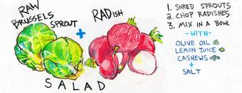 Sprout and Radish Salad by Phil Rosenbloom