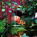 """""""Flamingos"""" by HYD"""