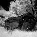 """leaning shed black and white"" by shutterlife"