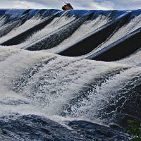 Union Pond Dam Art Prints & Posters by Phil Cardamone