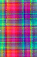 Bright Plaid (digital) by Louisa Knight