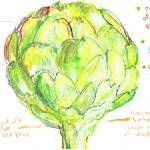 """How to Prepare an Artichoke by Naomi Bardoff"" by TheyDrawandCook"