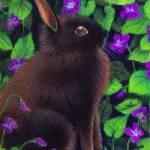 """Dwarf Bunny & Violets"" by evansonart"