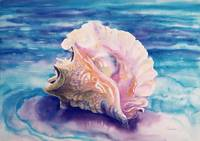 'Caribbean Queen' Queen Conch Shell Watercolor by Savanna Redman