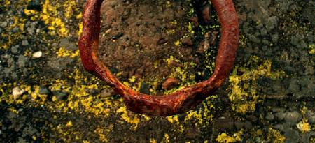Rusty Ring and Seattle Seawall