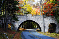 Bridge in Acadia with Fall Colors
